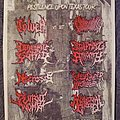 Toluca - Other Collectable - TXDM Ho Down 2 - Pestilence Upon Texas Tour flyer