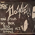 Doyle - Other Collectable - The Doyle fan club flyer