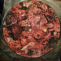 Carcass pic disc