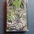 Worm Gloomlord Euro Edition Tape / Vinyl / CD / Recording etc