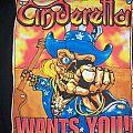 Cinderella - TShirt or Longsleeve - cinderella wants you