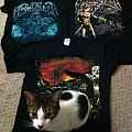 TShirt or Longsleeve - moonsorrow! and toki (my cat)