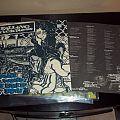 Falling Sickness - Because The World Has Failed Us Both (grey) vinyl LP. Tape / Vinyl / CD / Recording etc