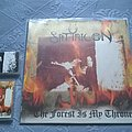 Satyricon - Tape / Vinyl / CD / Recording etc - Satyricon / Enslaved - The Forest Is My Throne LP