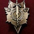 Ancient moon pin Pin / Badge