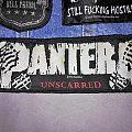 "Pantera ""Unscarred"" Stripe Patch"