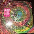 Cryptic Slaughter: *Rare* Stream Of Conciousness Originally-Pressed 1988 Record