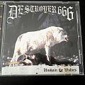 Deströyer 666 - Tape / Vinyl / CD / Recording etc - Destroyer 666 Unchain the Wolves