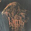 Lamb Of God - TShirt or Longsleeve - Lamb of god