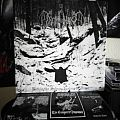 Demoncy - Tape / Vinyl / CD / Recording etc - Demony - Within the Sylvan Realms of Frost LP & Poster