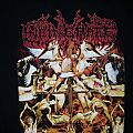 INCINERATE - TShirt or Longsleeve - Incinerate - Dissecting the Angels
