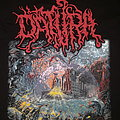 Datura - Spreading the Absorption TShirt or Longsleeve