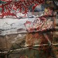 Cerebral Incubation - Asphyxiating on Excrement FLAG Other Collectable