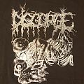 Disgorge - TShirt or Longsleeve - Disgorge - Monument to Our Remains