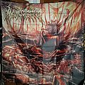 Invigorate - Sanctity the Last of Misery FLAG Other Collectable