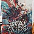 Rendered Helpless - Suffer, Seraphim FLAG Other Collectable