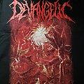 Devangelic - Of Maggots and Disease TShirt or Longsleeve