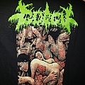 Gorgy - Sexually Transmitted Dismemberment TShirt or Longsleeve