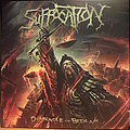 Suffocation ‎– Pinnacle Of Bedlam LP Tape / Vinyl / CD / Recording etc