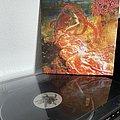 Morbid Angel - Tape / Vinyl / CD / Recording etc - Morbid Angel - Blessed are the Sick LP