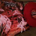 Immolation - Tape / Vinyl / CD / Recording etc - Death metal LP