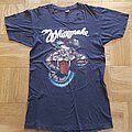 Whitesnake - TShirt or Longsleeve - Whitesnake