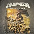 Hellowen Walls Of Jericho Grey Shirt