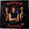 "Motörhead - Tape / Vinyl / CD / Recording etc - Motörhead – I Got Mine 12"" Single Vinyl"