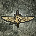 Division Speed - Wings Patch