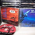 "Savatage - ""Dead Winter Dead"" CD Tape / Vinyl / CD / Recording etc"