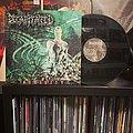 Decapitated - Nihility (Vinyl)