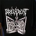 Irreverent - TShirt or Longsleeve - Irreverent