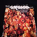 Carcass - TShirt or Longsleeve - Carcass - Symphonies Of Sickness Shirt