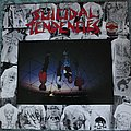 Suicidal Tendencies LP Tape / Vinyl / CD / Recording etc