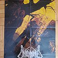 Unleashed - Other Collectable - Unleashed poster