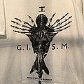 G.I.S.M - Guilty If... ts