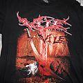TShirt or Longsleeve - Vile Shirt