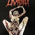 Lividity - TShirt or Longsleeve - Lividity shirt