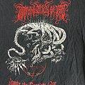 Lightening Swords Of Death Tour Shirt 2009