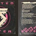 Early Twisted Sister singles: I'll Never Grow Up/Under the Blade from 1979 and Bad Boys (of Rock n' Roll)/Lady's Boy from 1980.