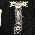 Ingested Call of the Void TS