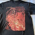 Morbid Angel Blessed are the Sick TS TShirt or Longsleeve