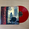 Blood Of Kingu - Tape / Vinyl / CD / Recording etc - BLOOD OF KINGU - Sun in the House of the Scorpion (Red Vinyl)  Osmose ProdR