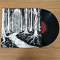 Siculicidium – Land Beyond The Forest (Black Vinyl) Tape / Vinyl / CD / Recording etc