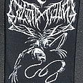 Leviathan - Patch - LEVIATHAN - A Silhouette In Splinters (Backpatch)
