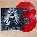 Septicflesh - Tape / Vinyl / CD / Recording etc - SEPTIC FLESH - A Fallen Temple (Transparent Red Double Vinyl