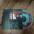 Evol - Tape / Vinyl / CD / Recording etc - EVOL - Ancient Abbey (Green/Red Swirl Vinyl) Limited to 300 Copies