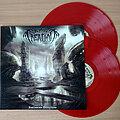Beyond Creation - Tape / Vinyl / CD / Recording etc - BEYOND CREATION – Earthborn Evolution (Double Transparent Red Vinyl) Ltd....