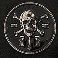 13th Moon - Pin / Badge - 13th Moon - Skull Insignia badge