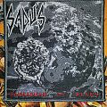 Sadus-Swallowed In Black Patch